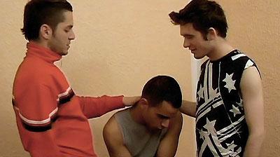 sensualism Gay Blowjob
